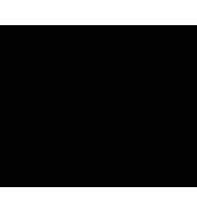 sbnt15 www logo
